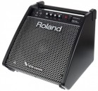ROLAND PM-100 MONITOR PERSONAL