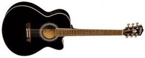 WASHBURN EA-12 BLACK